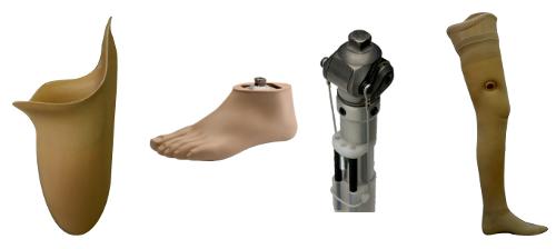 اجزای تشکیل دهنده پروتز پا